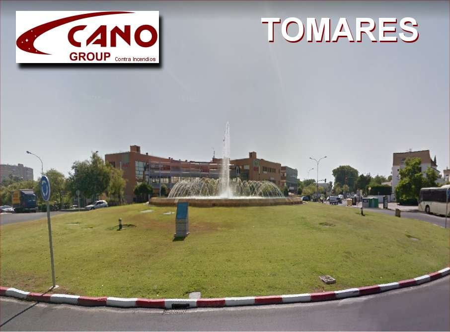 Tomares Cano Group